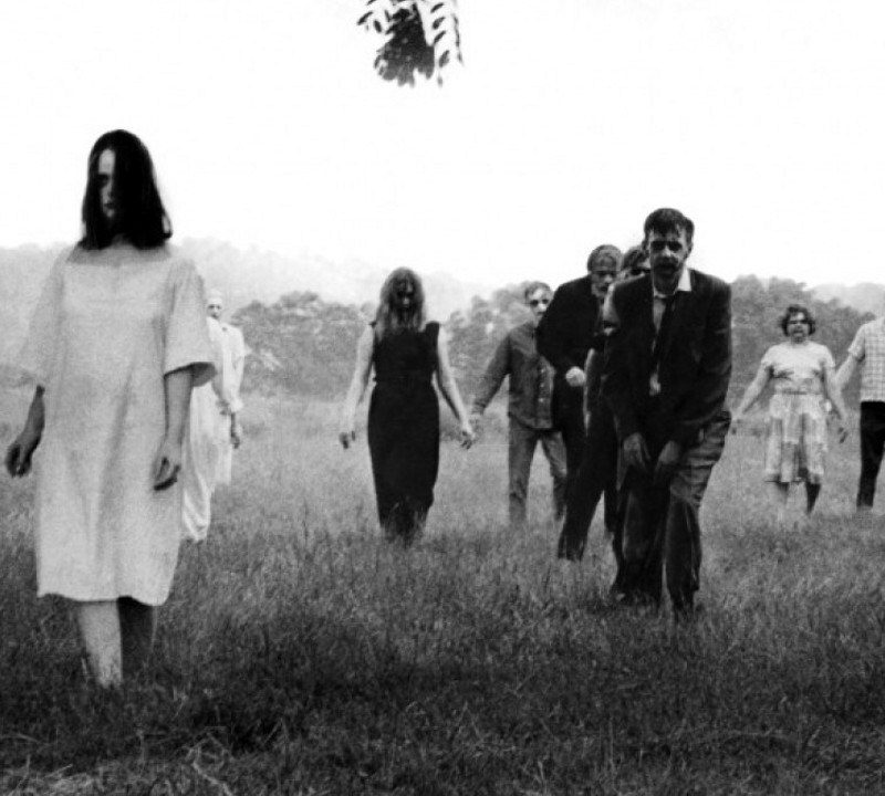'Land,' 'Diary' and 'Survival of the Dead': George A. Romero's Dead Reckoning