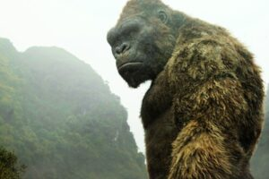 Fans Combined Godzilla Vs Kong's Footage Into One Trailer, Check It Out