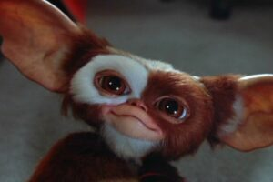"HBO Max Has Already Renewed ""Gremlins: Secrets of the Mogwai"" for Another Season!"