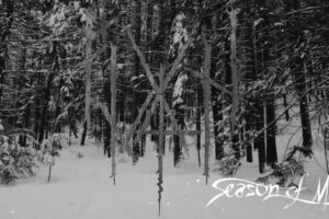 'Season Of Mists : FUATH – Into the Forest of Shadows (Official Music Video)'