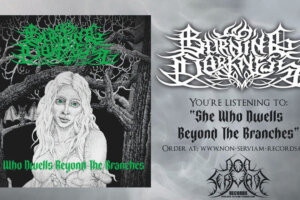 """Metal Underground – Burning Darkness Releases New Song """"She Who Dwells Beyond The Branches"""""""